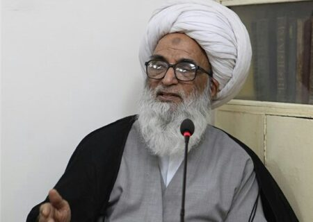 عالمی برادری اور اسلامی ممالک افغانستان میں امن قائم کرنے کے لئے کردار ادا کریں، آیت اللہ حافظ بشیر نجفی