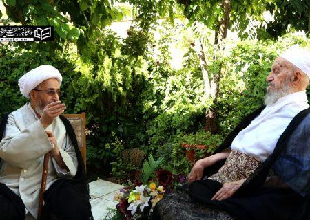 آیات عظام مکارم شیرازی اور جعفر سبحانی کی خصوصی ملاقات+تصاویر