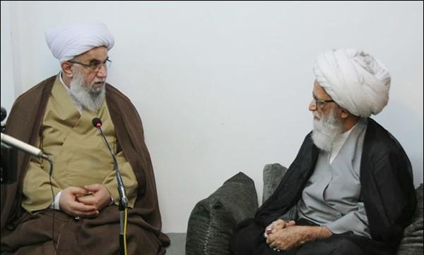 اسلامی جمہوریہ ایران پر فخر محسوس کرتے ہیں، ایران دلوں کے سکون کا سبب ہے، آیت اللہ العظمیٰ حافظ بشیر نجفی