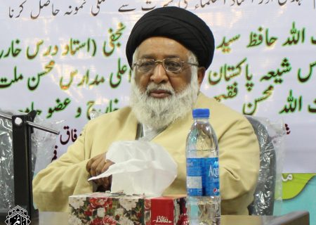 حضرت آیت اللہ حافظ سید ریاض حسین نجفی کا انٹرویو |قسط 2