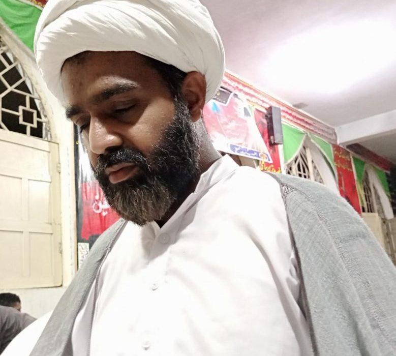 علامہ حسن زادہ عاملی علوم عقلی و نقلی نیز علوم رائجہ و علوم غریبہ تمام میں مکمل دسترس رکھتے تھے، مولانا محمد تقی فاضل